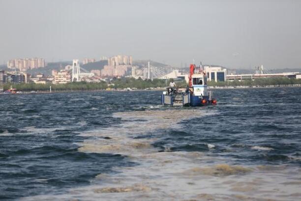 İzmit Körfezi'nden100 ton deniz salyası toplandı