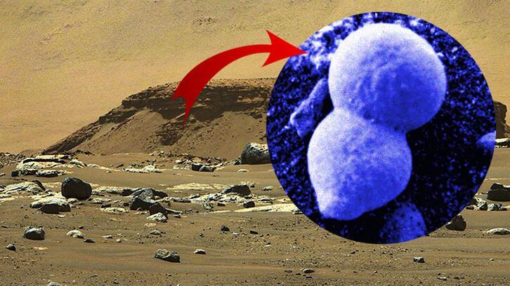 Mars iddiası: Hayat oluşması bir yana yaşamak bile 'zor'