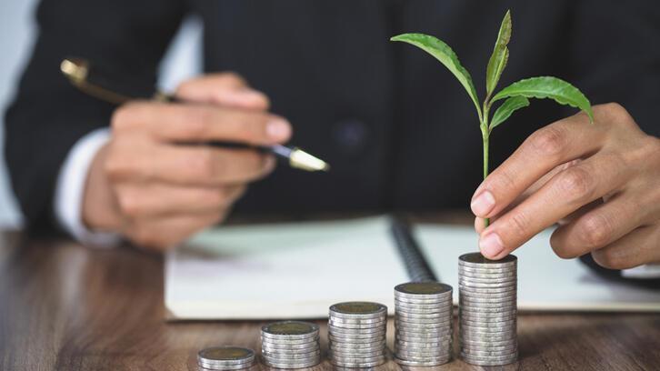 Yatırım fonu ne gibi avantajlar sunar?