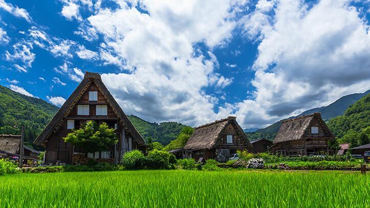 Japonya'da terk edilmiş evler 500 dolara satılıyor