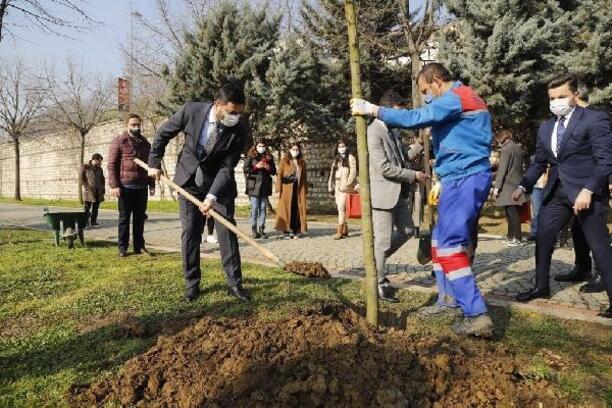 Kağıthane Belediyesi Manavgat'a 10 bin fidan gönderecek