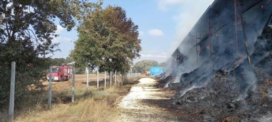 Tekirdağ'da saman deposunda yangın