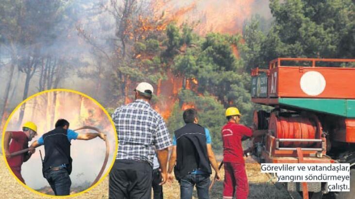 25 hektar bu yüzden mi yandı?