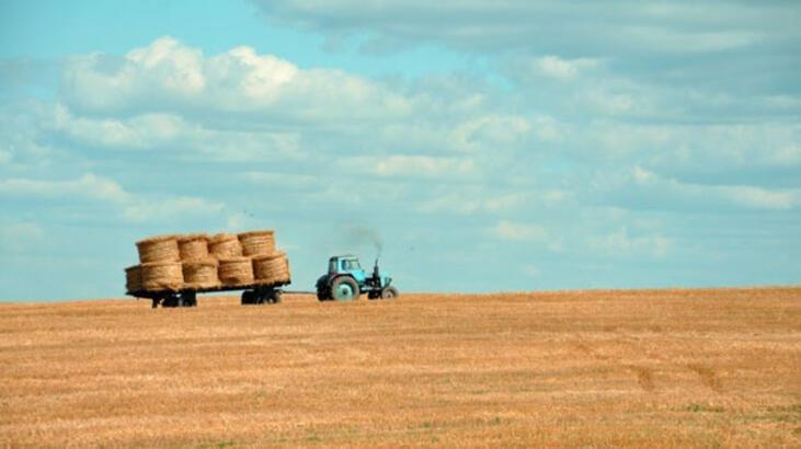 AB tarım ihracatı arttı