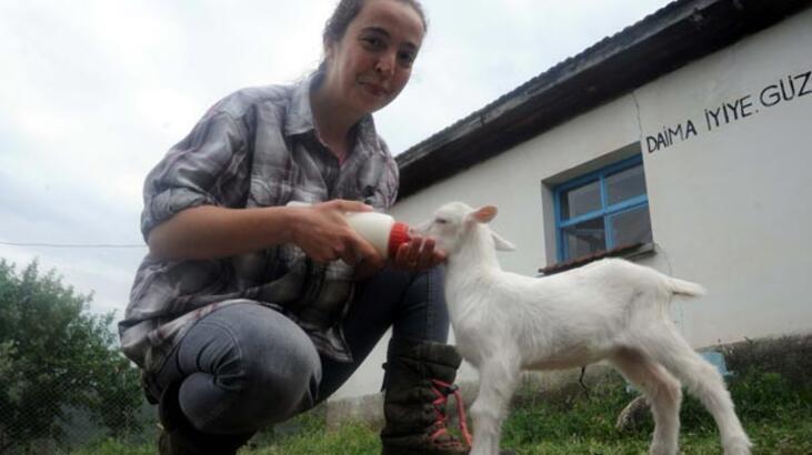 """""""Nişantaşı kızı"""" köyde keçi güdüyor"""