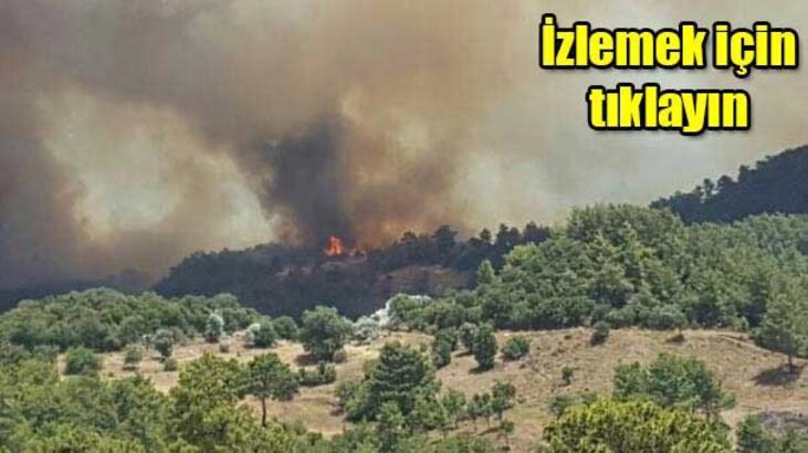 Kumluca'daki yangın söndü, Adrasan'da başladı