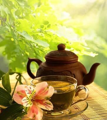 Gençlik aşısı 'beyaz çay'