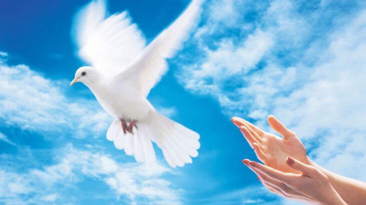 Barış istiyoruz hemen, şimdi, acil!