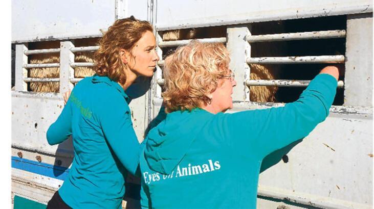 Hayvanseverler sınır tanımıyor