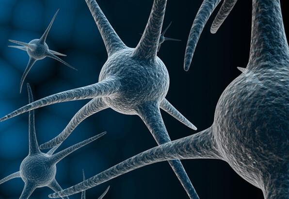 Elektrolit dengesinin önemi - Sağlık Haberleri