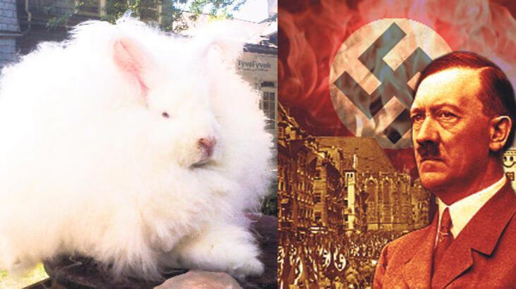 Hitler'den Ankara tavşanı operasyonu