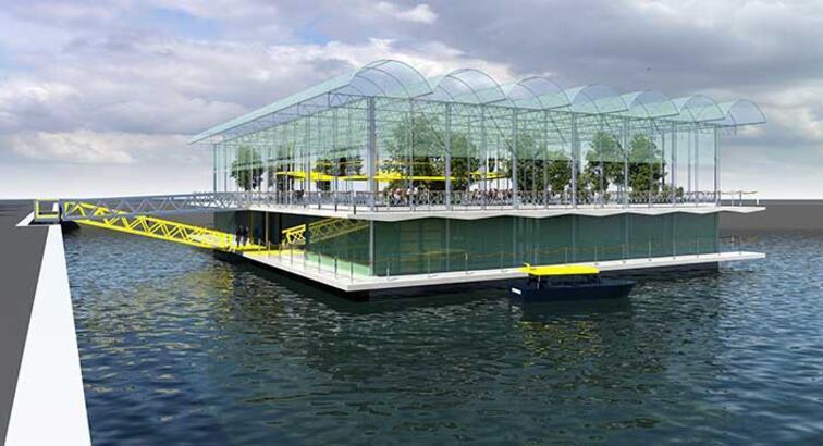 Hollanda'da 'yüzen çiftlik' için çalışmalara başlandı