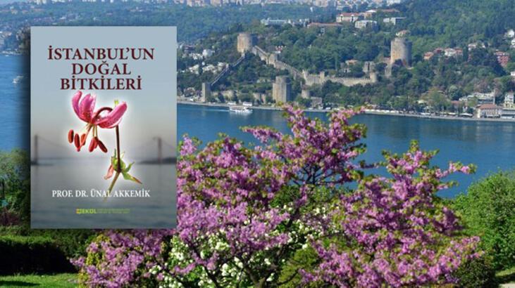 İstanbul'un 982 bitki türü bu kitapta
