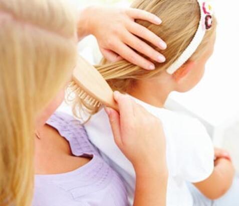 Okul çocuklarının başının belası: Bit