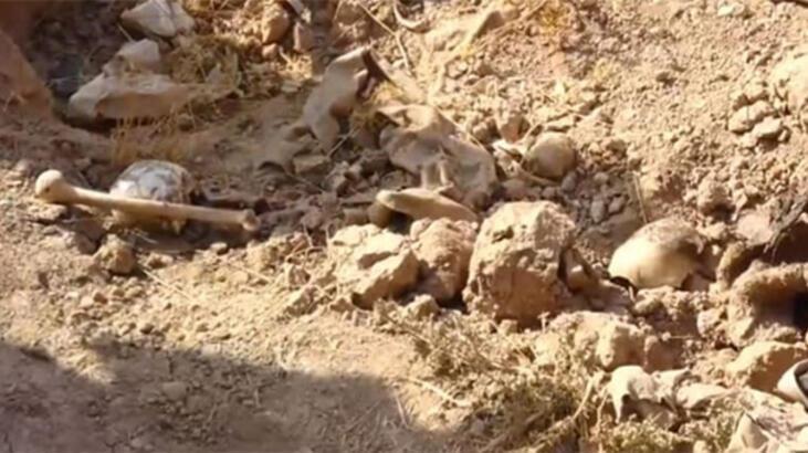 400 kişilik toplu mezarlar bulundu