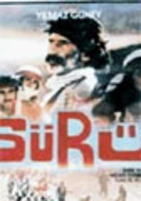 Popun Yarım Asrı / 1978
