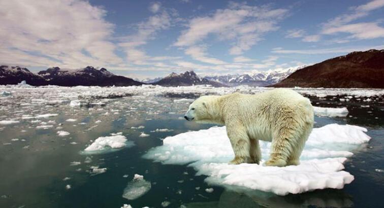 İklim değişikliği sebebiyle medeniyetlerimiz çökebilir