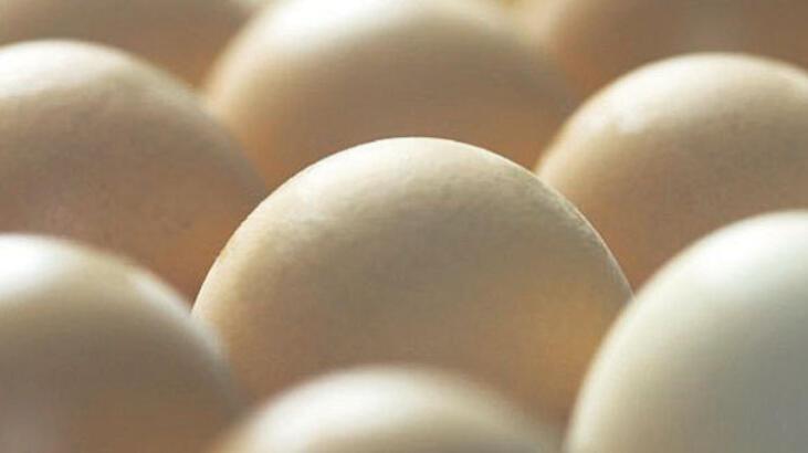 Kansere karşı 'yumurta ilacı'