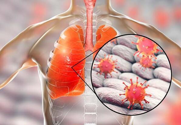 H1N1 virüsü nedir?