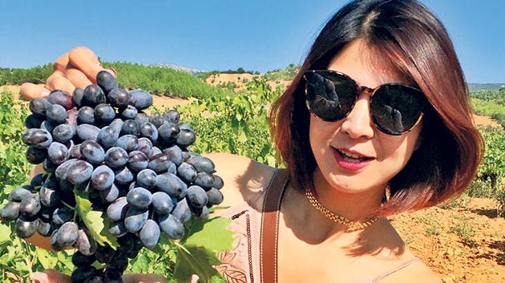 Isparta'da üzüm hasadı turizmi