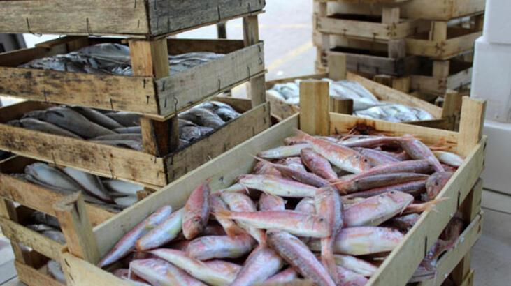 Balık sezonu kapandı