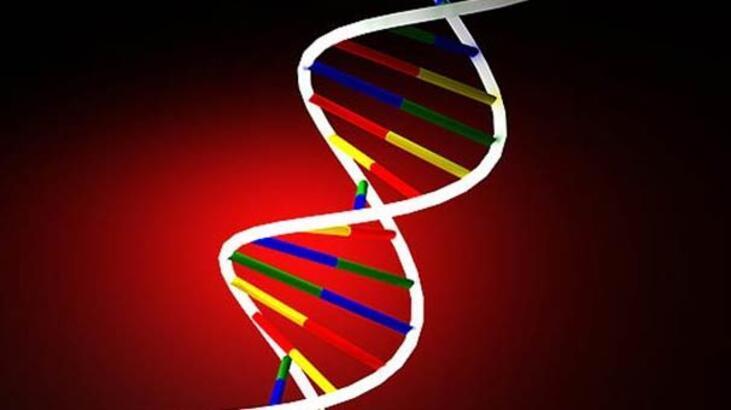 DNA testleri mahkeme kararını bekliyor