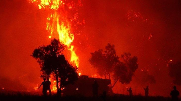 Bir ayda 300 orman yandı! Uzmanlar uyardı