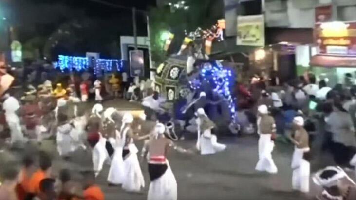 Sri Lanka'da tören alayındaki fil 18 kişiyi yaraladı