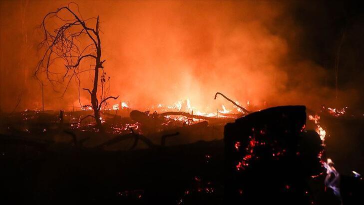 Yangın 2 milyon hektar alanı kül etti