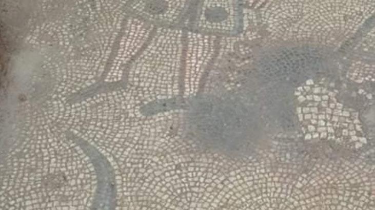 Kaçak kazıda ortaya çıktı! Roma dönemine ait...