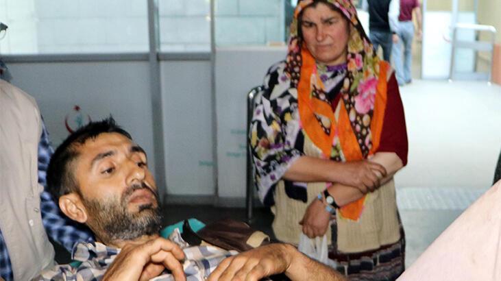 Erzurum'da ayı saldırısı! 1 ölü, 2 yaralı...