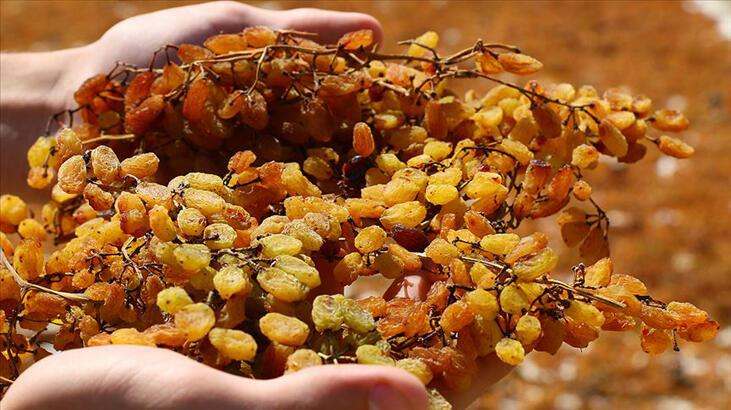 TMO'dan çekirdeksiz kuru üzümde 10 bin tonluk alım