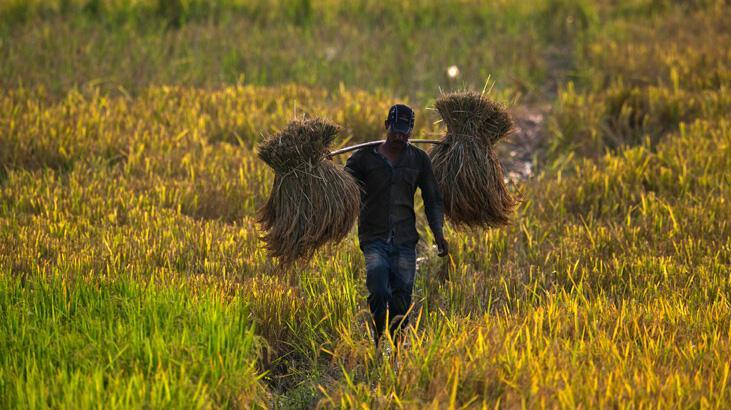 Yüzlerce çiftçi Yeni Delhi'ye yürüyor