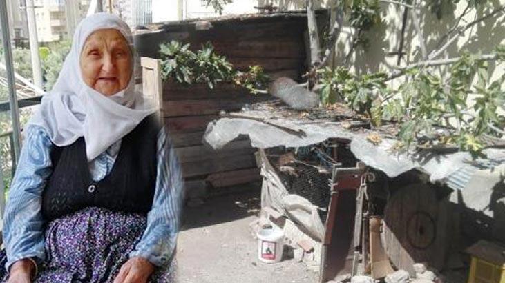 İnsanlık dışı olayda flaş gelişme! Yaşlı kadını evin arkasına götürüp...