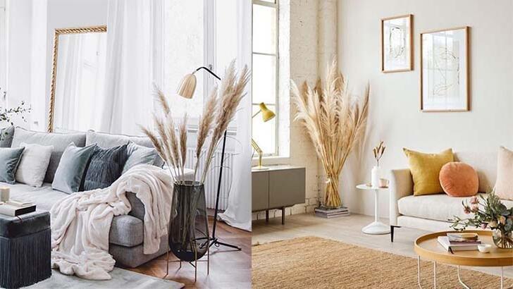 Evinize doğallık katacak pampas otu ile dekorasyon nasıl yapılır?