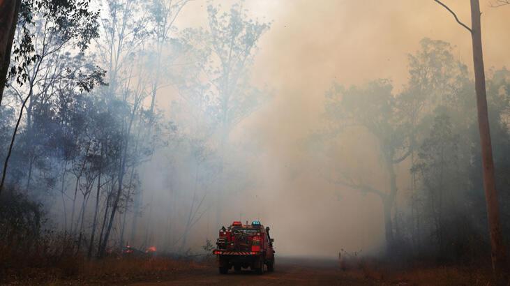 Orman yangınları 30 evi kül etti