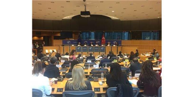 Karayel, Türkiye-Avrupa Birliği Karma Parlamento Komisyonu'nun 77. Toplantısında Konuştu