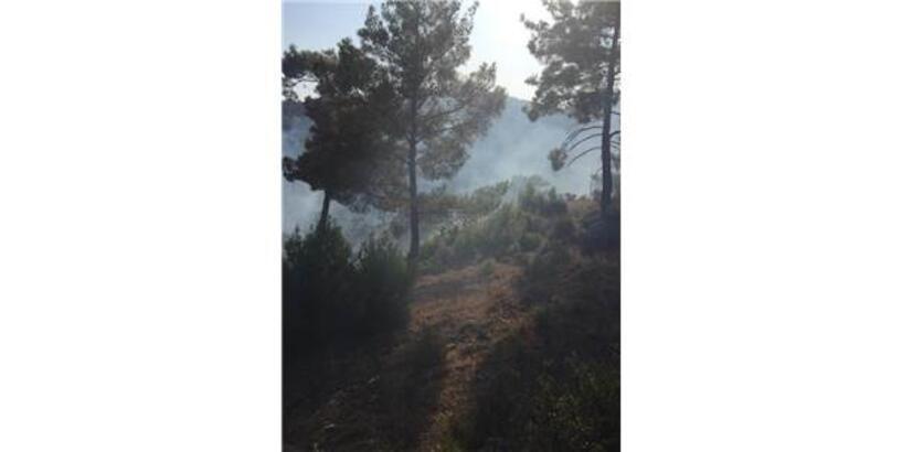 Serik'te 10 Hektar Orman Alanı Zarar Gördü