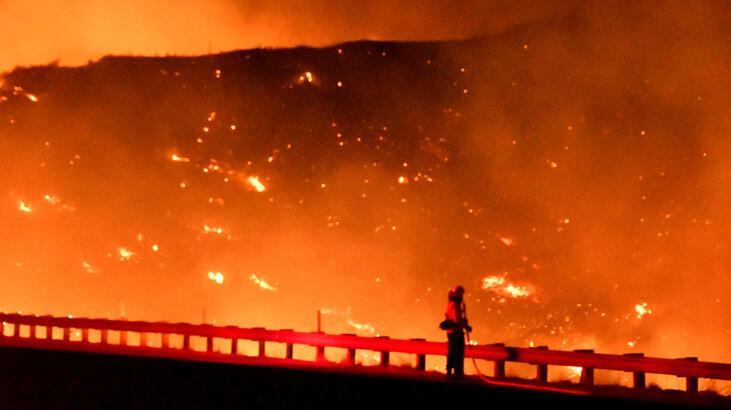 Meksika'da ölümcül orman yangınları