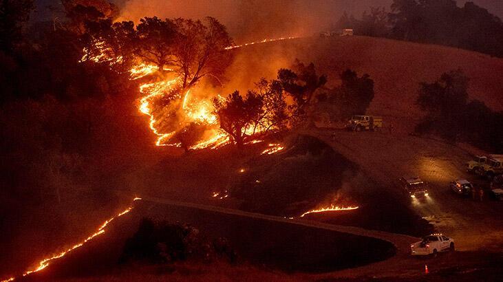 California'da orman yangınları söndürülemiyor