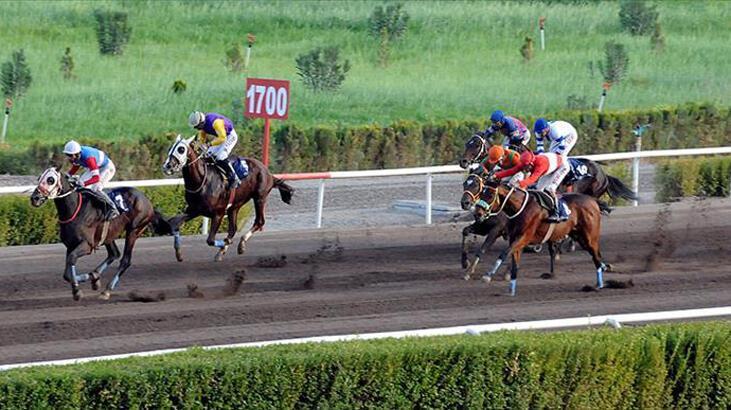 Türkiye Varlık Fonu, at yarışları ve bahisleri hizmet alımı sürecini başlattı