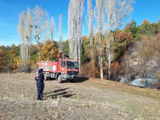 Orman yangını fidanlığa sıçramadan söndürüldü