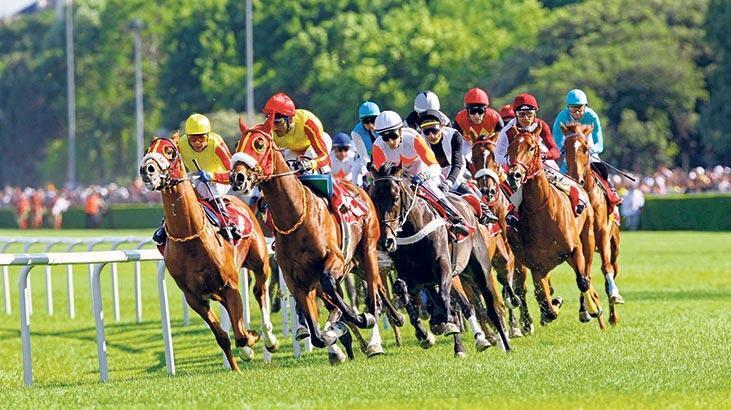 At yarışlarında TVF harekete geçti