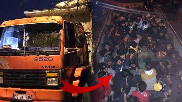 Pes artık! 'Koyun var' dedi kasadan 69 göçmen çıktı