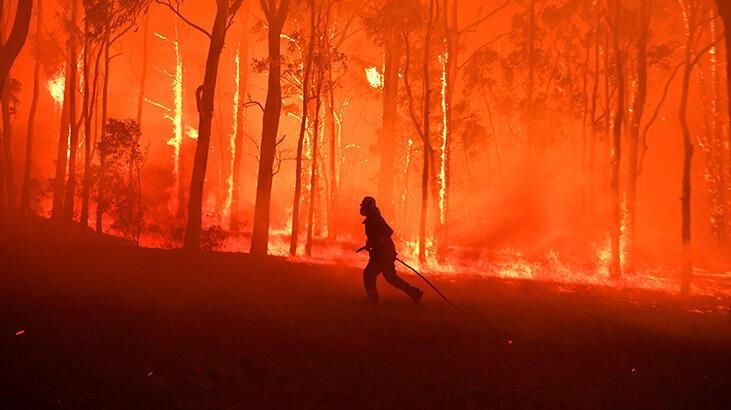 Avustralya yangınlarla baş edemiyor