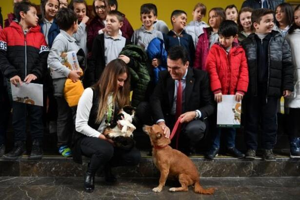 Osmangazi Belediyesi engelli hayvanları unutmadı
