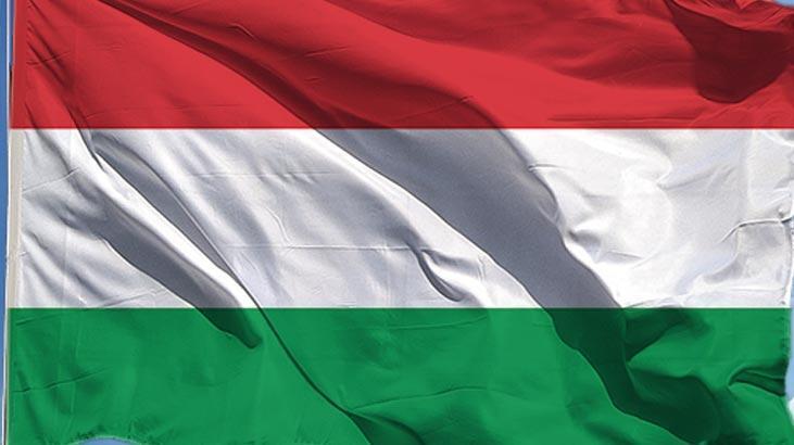 Macaristan'dan Ukrayna-NATO iş birliğine ilişkin açıklama