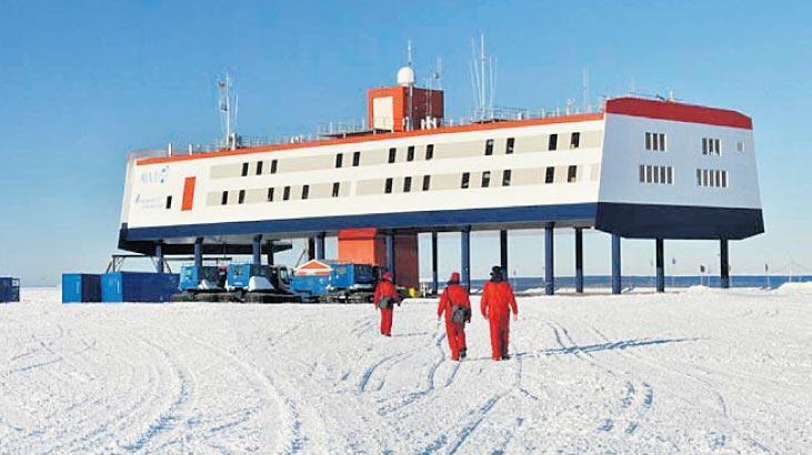 Antarktika'da beyinleri küçüldü