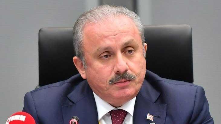 Meclis Başkanı Şentop: 'Ciddiye alınacak bir karar değil'