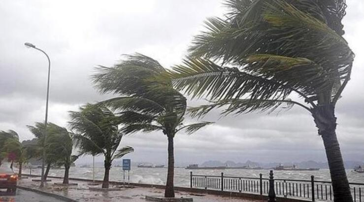 Hava durumu bugün nasıl olacak? Meteoroloji'den kuvvetli rüzgar ve yağış  uyarısı - Haberler Milliyet